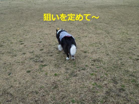 DSCN0196.jpg