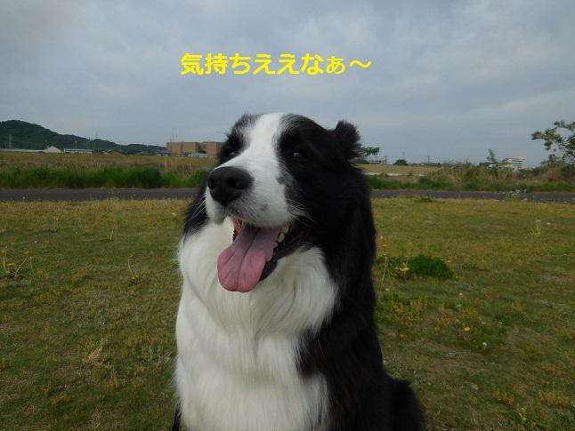 DSCN1901.jpg