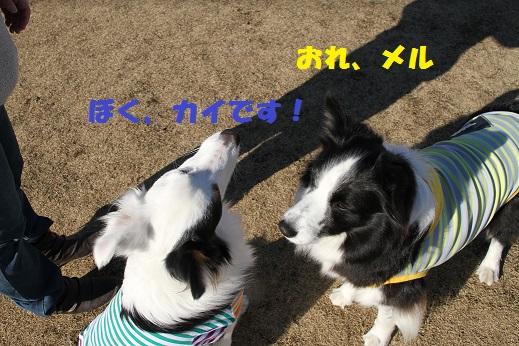 IMG_5401.jpg