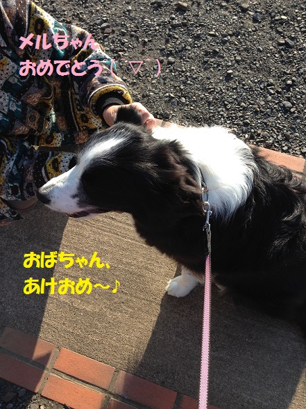 IMG_8112.jpg