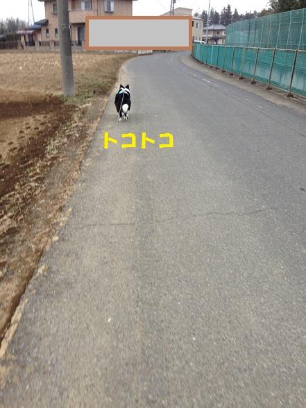 IMG_9033.jpg