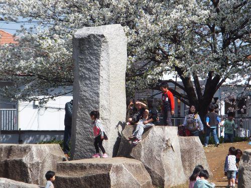 湘南台公園6