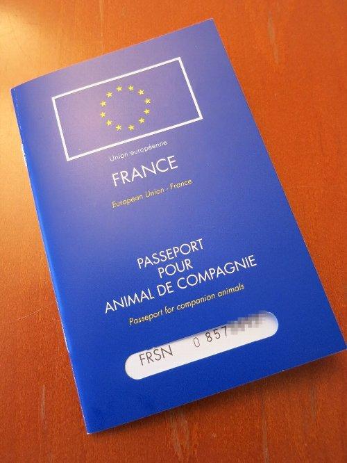 パスポート表紙