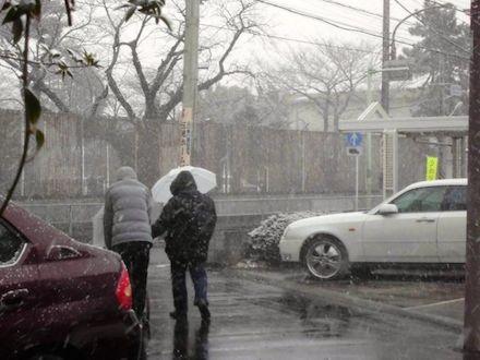 雪の中、母