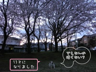 20150402mojiiri.jpg