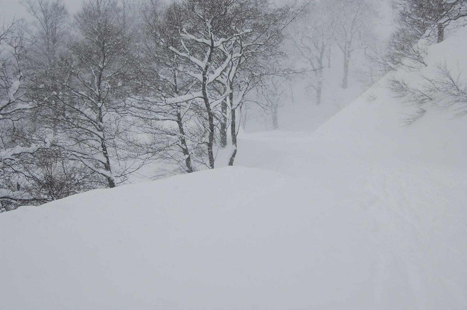 山頂のスキー場