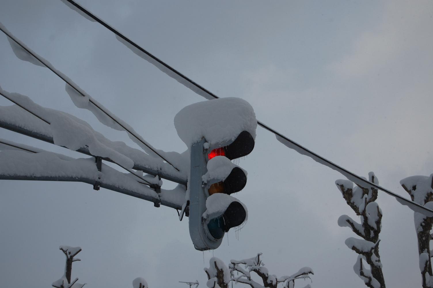 凍てつく信号