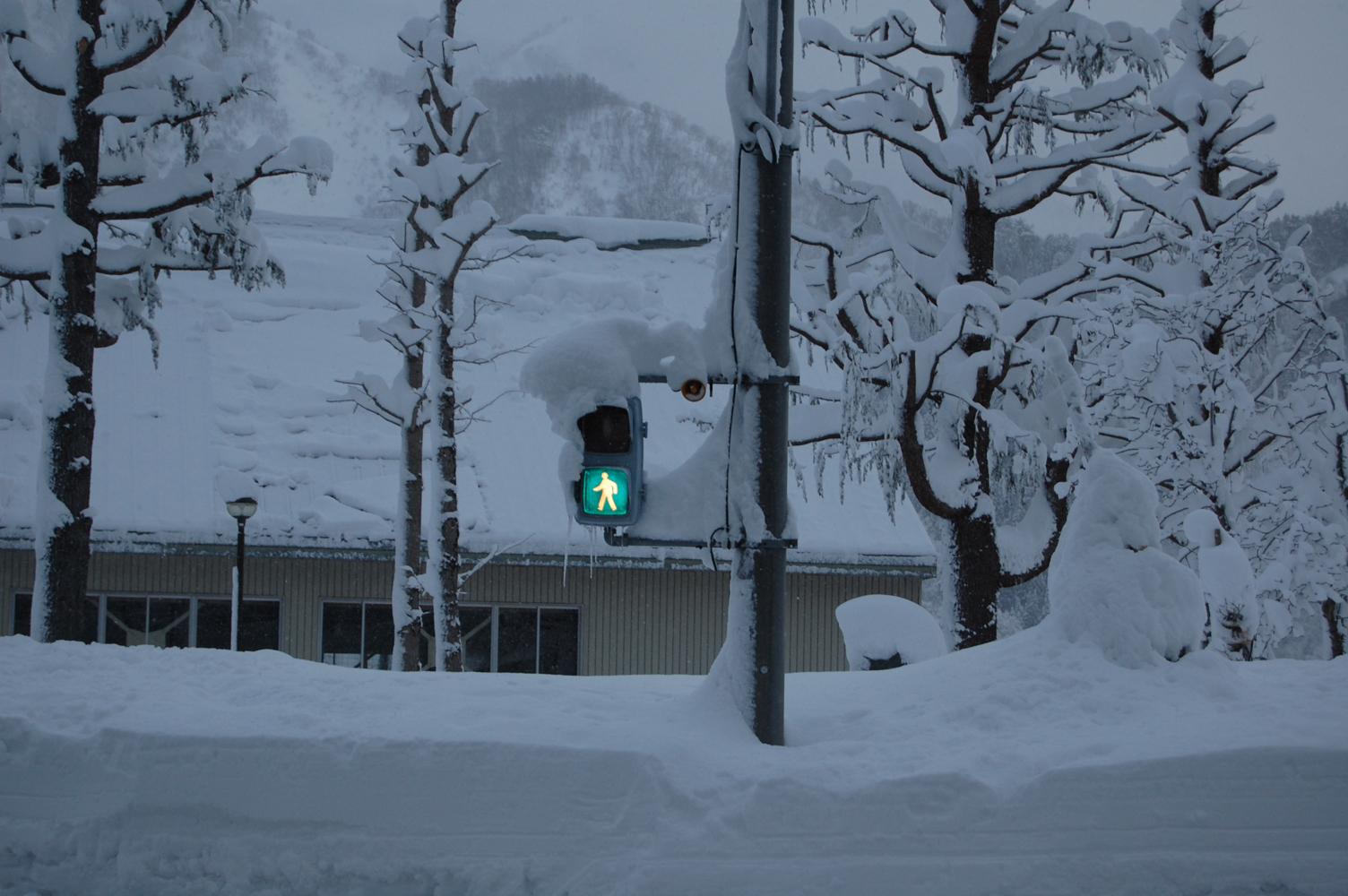 凍てつく横断歩道