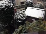 雪1501301