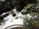 雪1501302