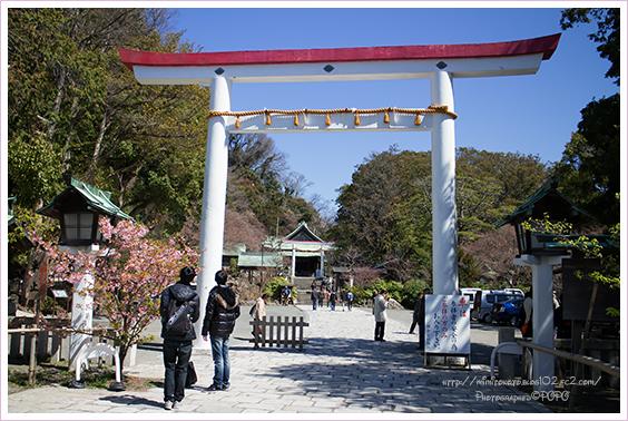 鎌倉宮(去年3月)