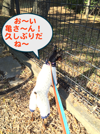 20140108-2.png