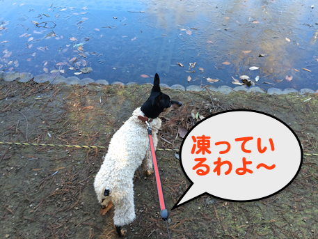 20150112-1.png