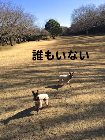 20150112-2.png