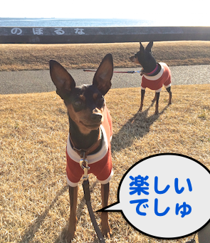20150112-6.png