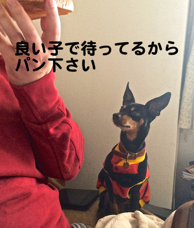 20150218-3.png