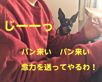 20150218-5.png
