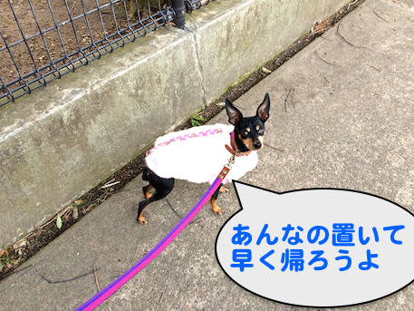 20150221-2.png