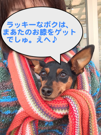 20150223-1.png