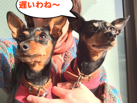 20150223-6.png