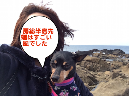 20150319-5.png