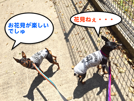 20150402-4.png