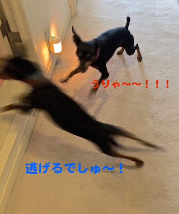 20150421-6.png