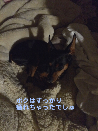 20150520-3.png