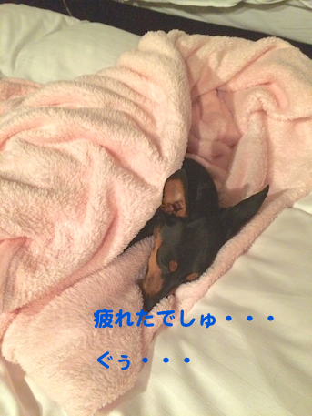 20150701-4.png