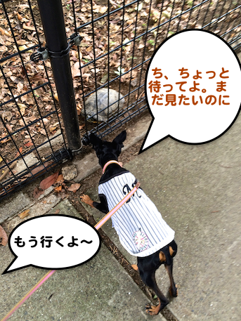 20150705-4.png