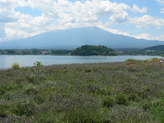 2207大石公園富士