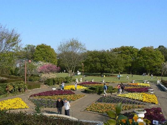 2205花園