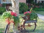 bicycle07.jpg