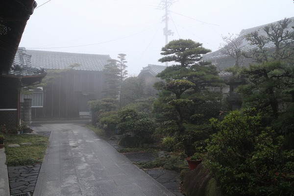 庭にも霧 27.3.17