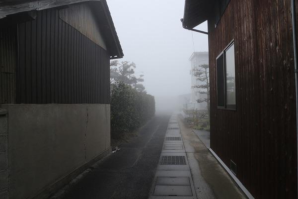 高瀬川の土手が見えない霧 27.3.17