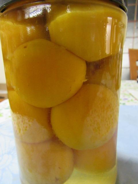 梅にべんりで酢を 27.6.24