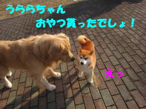 IMG_1223.jpg