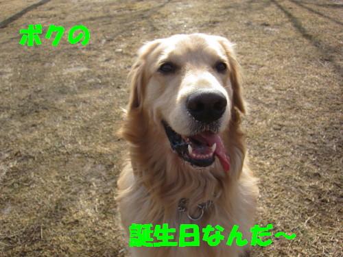 IMG_1257.jpg