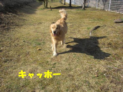 IMG_1402.jpg