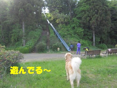 IMG_1475.jpg