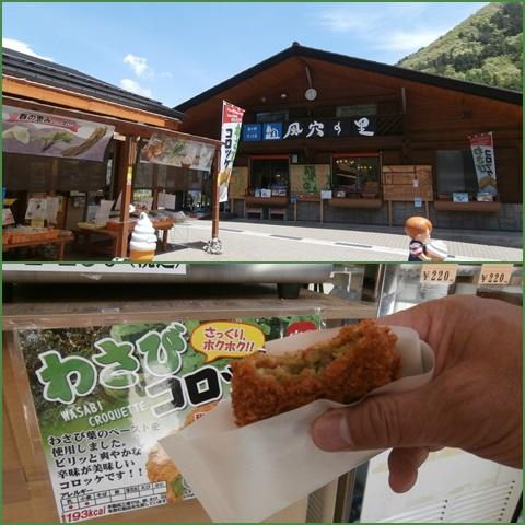 wasabi_convert_20150512213029.jpg