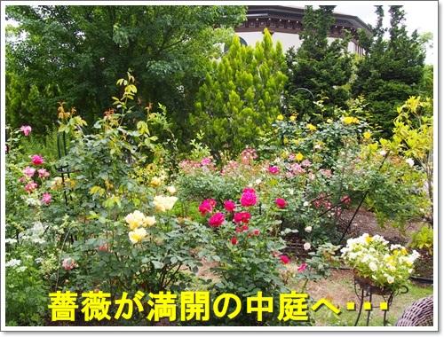 20150607_347.jpg