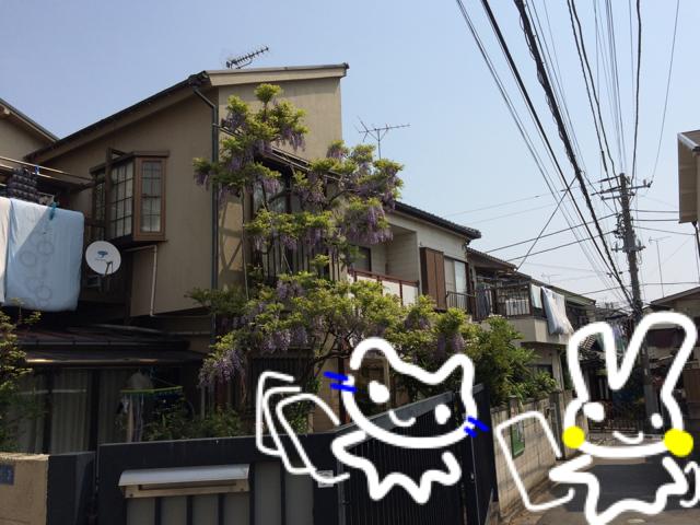 ポスティンぎぃさん住宅街