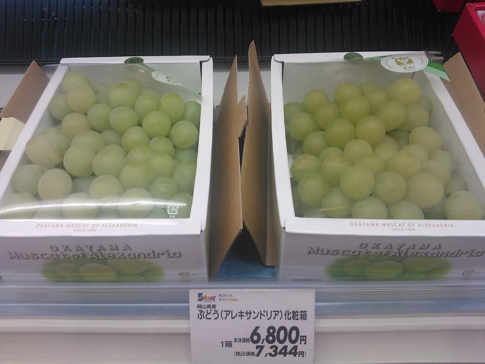 Grape ぶどう 岡山