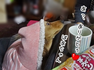 kinako1597.jpg