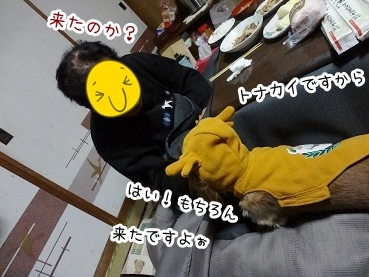 kinako1601.jpg