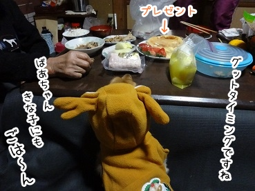 kinako1603.jpg