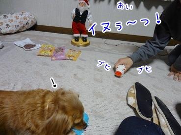 kinako1609.jpg