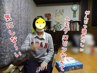 kinako1619.jpg
