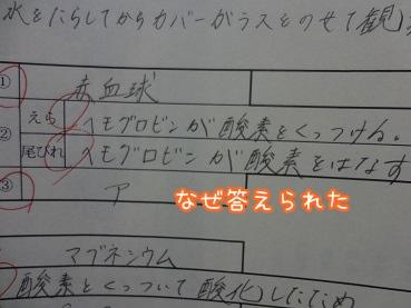 kinako1621.jpg